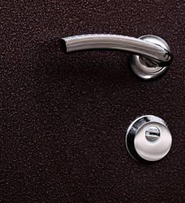 Металлическая дверь Ратибор Вега (производство Йош